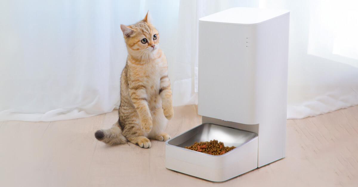 Xiaowan Smart Pet Feeder Smart Pet Feeder From Xiaomi