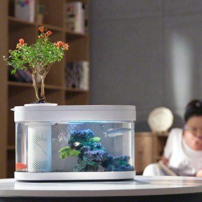 xiaomi aquarium